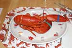 Lobster at Cape Cod